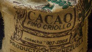 Criollo cacaobonen