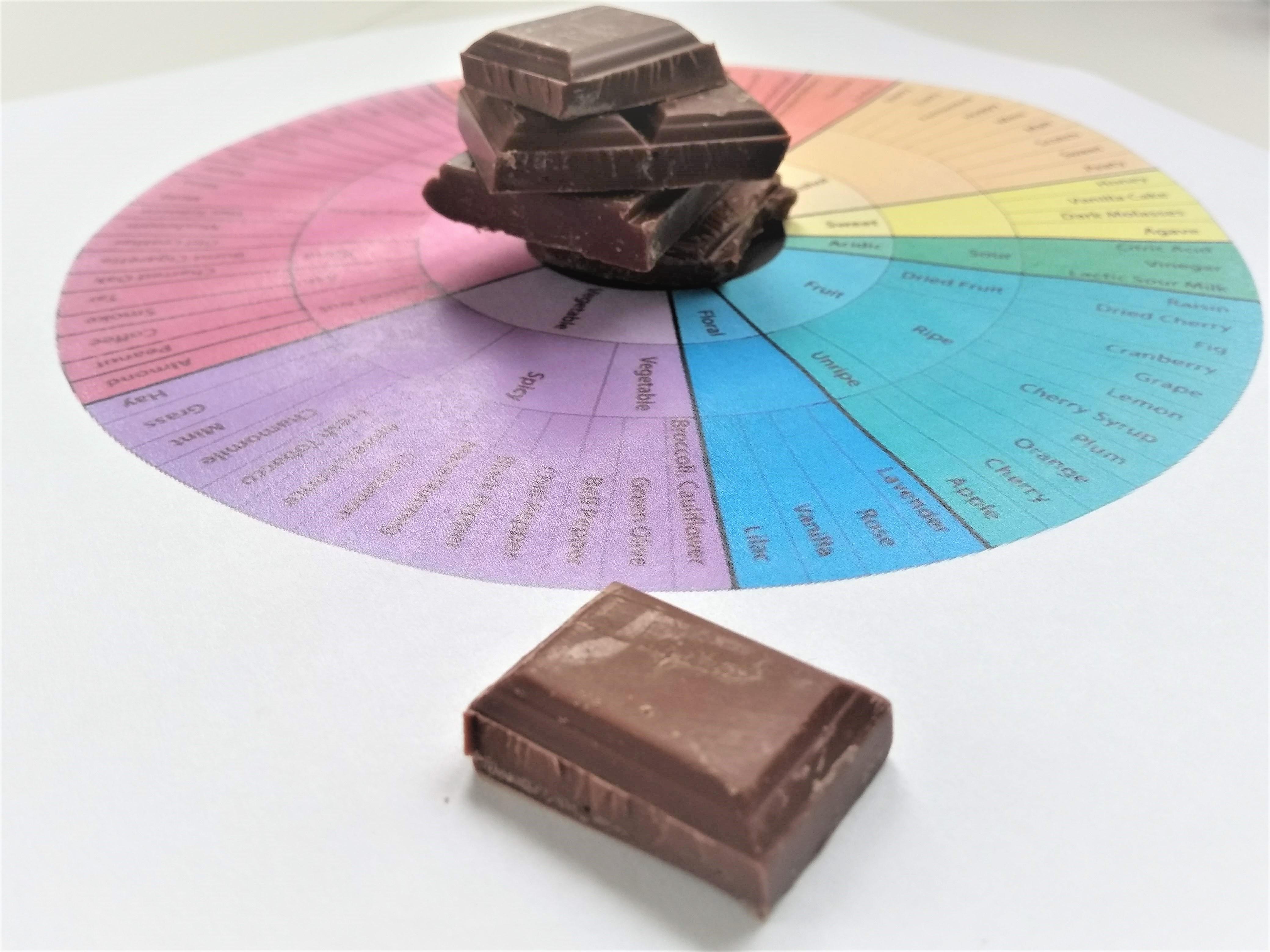 Chocolade proeven, je moet het maar kunnen
